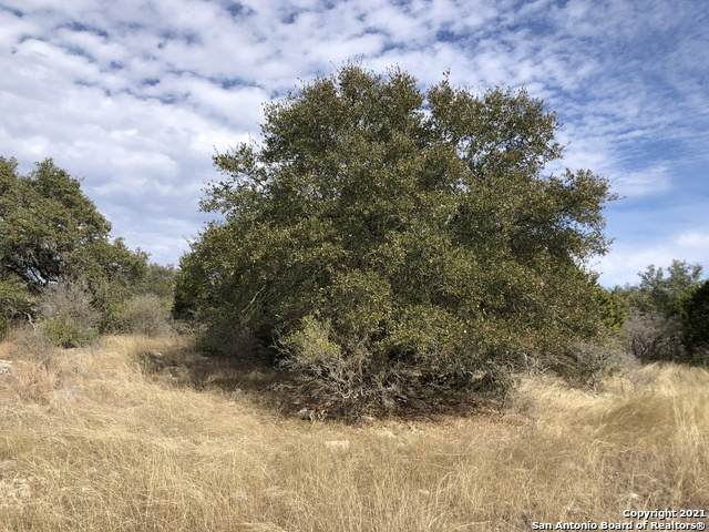 1032  (LOT 762) Riesling, New Braunfels, TX 78132 (MLS #1508125) :: The Castillo Group