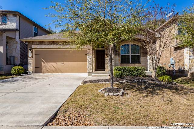 6823 Briscoe Mill, San Antonio, TX 78253 (MLS #1508152) :: The Rise Property Group