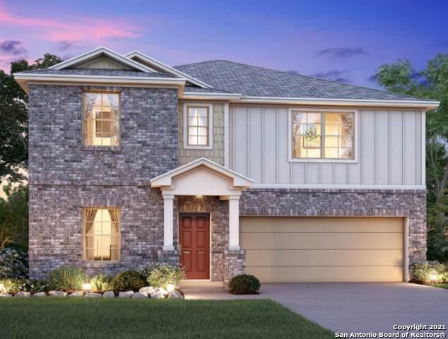 816 Shrike Lane, New Braunfels, TX 78130 (MLS #1508378) :: Real Estate by Design