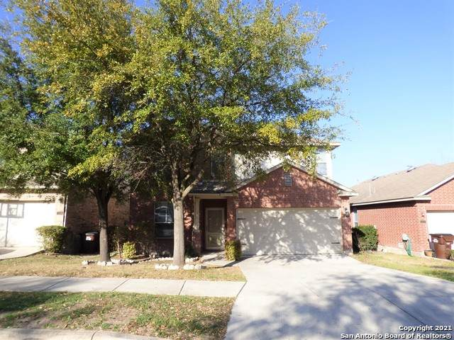 12131 Painted Daisy, San Antonio, TX 78253 (MLS #1508445) :: The Rise Property Group