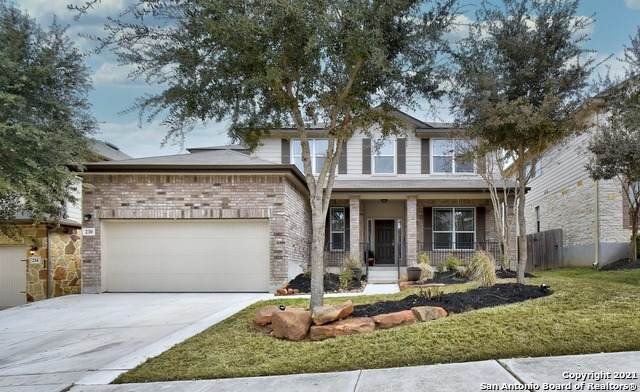 230 Ridge Bluff, Cibolo, TX 78108 (MLS #1508741) :: 2Halls Property Team | Berkshire Hathaway HomeServices PenFed Realty