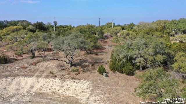 1916 Split Mountain, Canyon Lake, TX 78133 (MLS #1509055) :: Neal & Neal Team