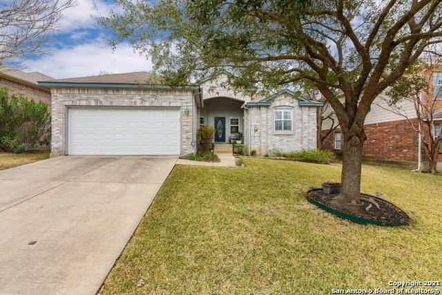 21022 El Suelo Bueno, San Antonio, TX 78258 (MLS #1509303) :: Williams Realty & Ranches, LLC