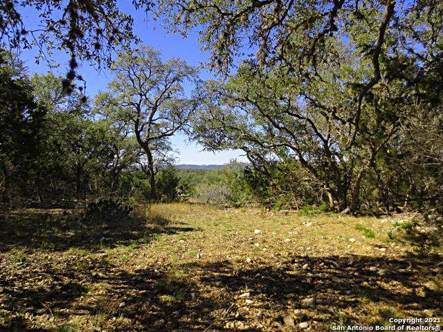 TRACT 8 Pr 1301, Hondo, TX 78861 (MLS #1509314) :: Williams Realty & Ranches, LLC