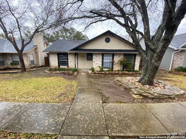 12110 Magnolia Blossom, San Antonio, TX 78247 (MLS #1509431) :: The Rise Property Group
