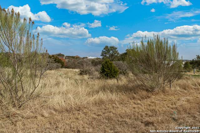 1048 Via Principale, New Braunfels, TX 78132 (MLS #1509492) :: The Castillo Group