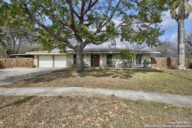 7410 Castle Fawn, San Antonio, TX 78218 (MLS #1509499) :: Berkshire Hathaway HomeServices Don Johnson, REALTORS®