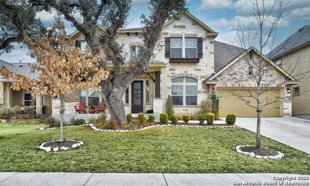 18718 Wild Onion, San Antonio, TX 78258 (MLS #1509716) :: The Gradiz Group