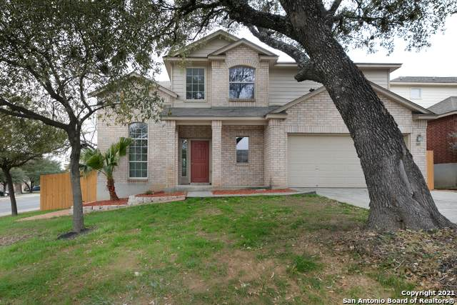 843 Wooden Fox, San Antonio, TX 78245 (MLS #1509724) :: The Castillo Group