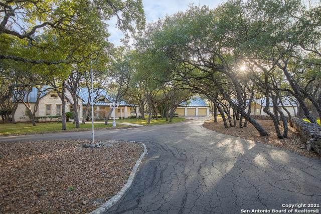 113 Ammann Rd, Boerne, TX 78015 (MLS #1510130) :: The Lugo Group