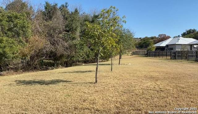 438 Knoll Springs, Boerne, TX 78006 (MLS #1510259) :: The Glover Homes & Land Group