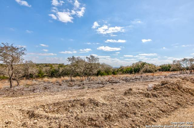 0 Earle Oak Ave Lot 5, Bulverde, TX 78163 (MLS #1510480) :: EXP Realty