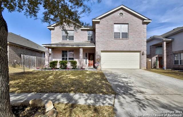 14602 Redwood Valley, Helotes, TX 78023 (MLS #1510636) :: Alexis Weigand Real Estate Group