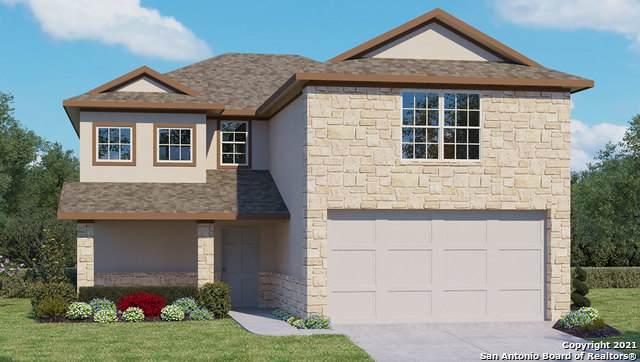 21902 Backspin, San Antonio, TX 78261 (MLS #1510690) :: Vivid Realty