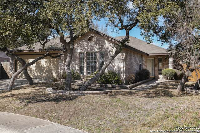 10611 Lion Path, San Antonio, TX 78251 (MLS #1510777) :: Vivid Realty