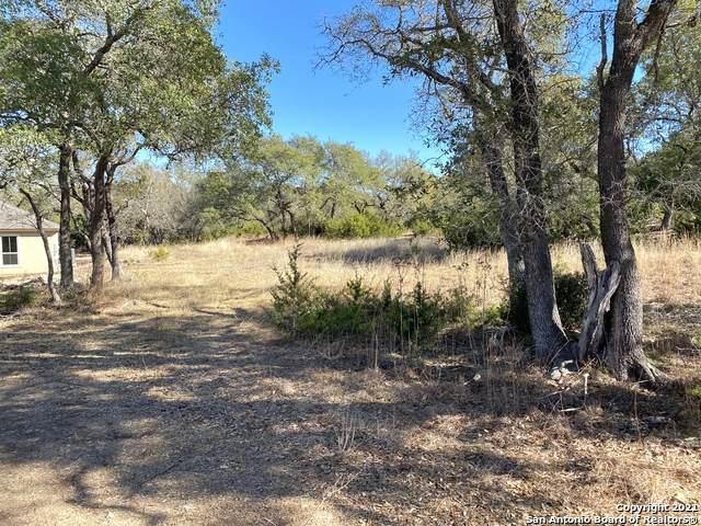 1670 Bella Vista, Canyon Lake, TX 78133 (MLS #1510864) :: The Lugo Group