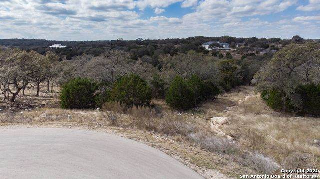 1534 Bolognese, New Braunfels, TX 78132 (MLS #1511029) :: The Lugo Group
