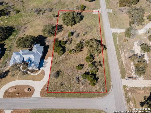 1211 Decanter Dr, New Braunfels, TX 78132 (MLS #1511108) :: Williams Realty & Ranches, LLC