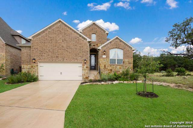 23306 Emerald Pass, San Antonio, TX 78258 (MLS #1511145) :: Sheri Bailey Realtor
