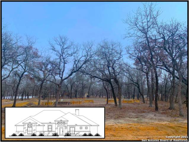 291 Cibolo Way, La Vernia, TX 78121 (MLS #1511284) :: The Castillo Group