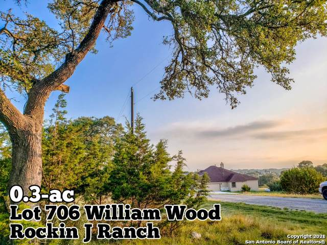 LOT 706 William Wood, Blanco, TX 78606 (MLS #1511401) :: Williams Realty & Ranches, LLC