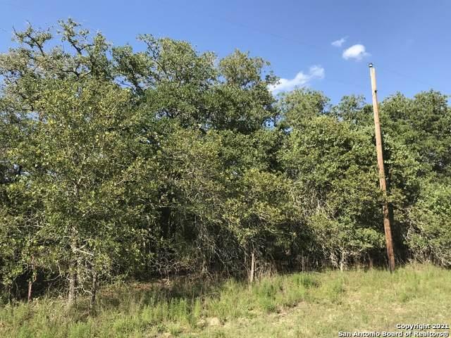230 Turkey Tree Trail, Seguin, TX 78155 (MLS #1511450) :: Keller Williams City View