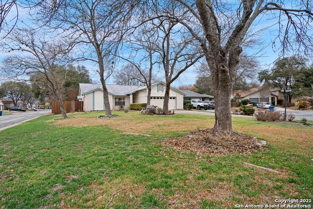 14027 Tree Crossing St, San Antonio, TX 78247 (MLS #1511461) :: The Glover Homes & Land Group