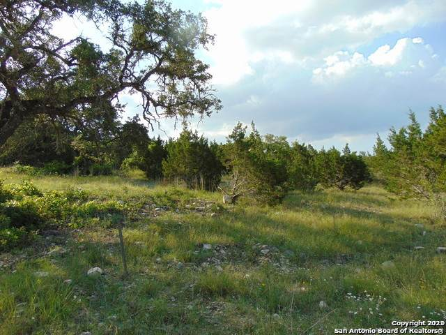 LOT 42 Canyon Rim, Helotes, TX 78023 (MLS #1511490) :: Alexis Weigand Real Estate Group