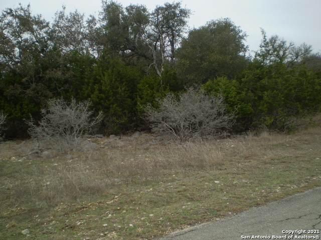 615 Rittimann Rd, Spring Branch, TX 78070 (MLS #1511496) :: Keller Williams City View
