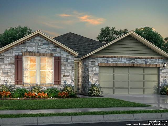 3630 Conrads Cloud, New Braunfels, TX 78130 (#1511507) :: The Perry Henderson Group at Berkshire Hathaway Texas Realty