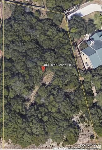 403 Deer Cross Ln, San Antonio, TX 78260 (MLS #1511556) :: Vivid Realty