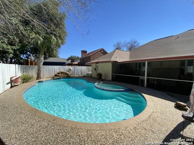 3325 Foxbriar Ln, Schertz, TX 78108 (MLS #1511650) :: Vivid Realty