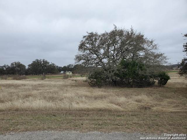 125 Hiram Cook, Blanco, TX 78606 (MLS #1511672) :: The Mullen Group | RE/MAX Access