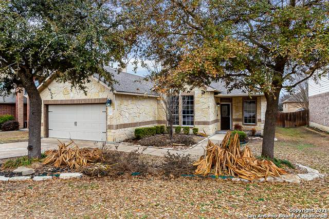 12102 Water Valley, San Antonio, TX 78249 (MLS #1511768) :: The Gradiz Group