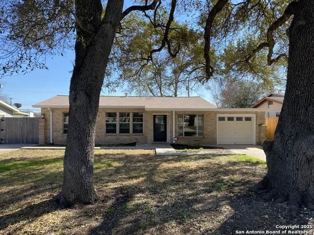 146 Banbridge Ave, San Antonio, TX 78223 (MLS #1511884) :: Keller Williams City View