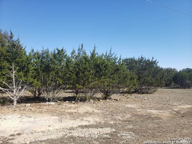LOT 13 Pr 1516, Bandera, TX 78003 (MLS #1511989) :: The Curtis Team