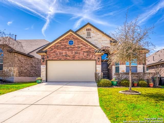 17203 Moscato, San Antonio, TX 78247 (MLS #1512136) :: 2Halls Property Team | Berkshire Hathaway HomeServices PenFed Realty