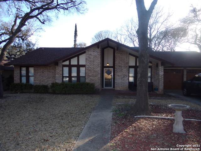 13122 Hill Forest St, San Antonio, TX 78230 (MLS #1512207) :: Vivid Realty