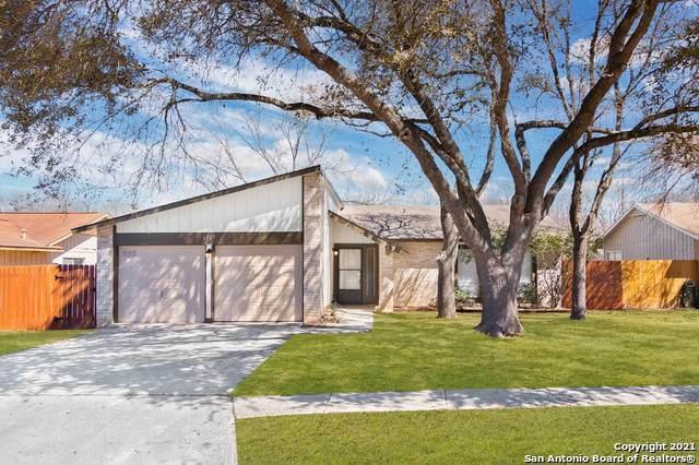 6107 Little Brandywine Crk, San Antonio, TX 78233 (MLS #1512502) :: Vivid Realty