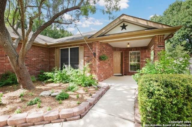 3737 Limestone Mesa, Schertz, TX 78154 (MLS #1512839) :: Exquisite Properties, LLC
