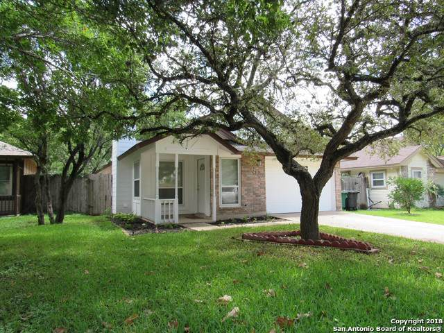 12010 Stoney Pass, San Antonio, TX 78247 (#1512950) :: The Perry Henderson Group at Berkshire Hathaway Texas Realty