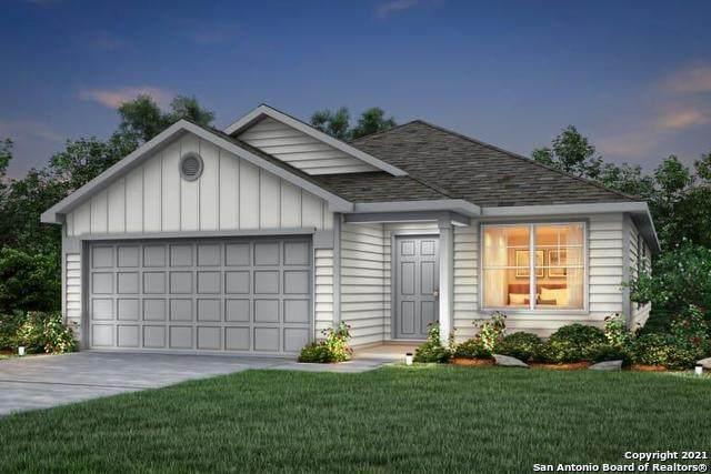 428 Nova Zembla, New Braunfels, TX 78130 (MLS #1512951) :: Vivid Realty