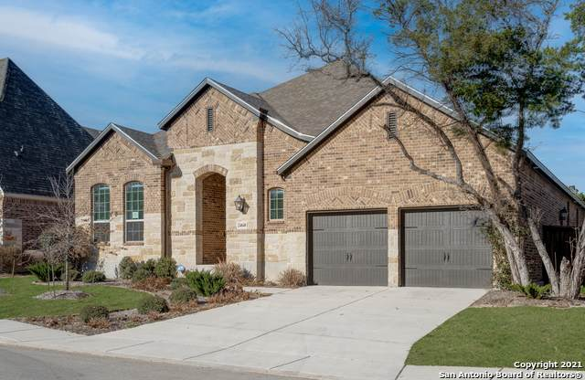 24848 Marcia Vw, San Antonio, TX 78261 (MLS #1513003) :: EXP Realty