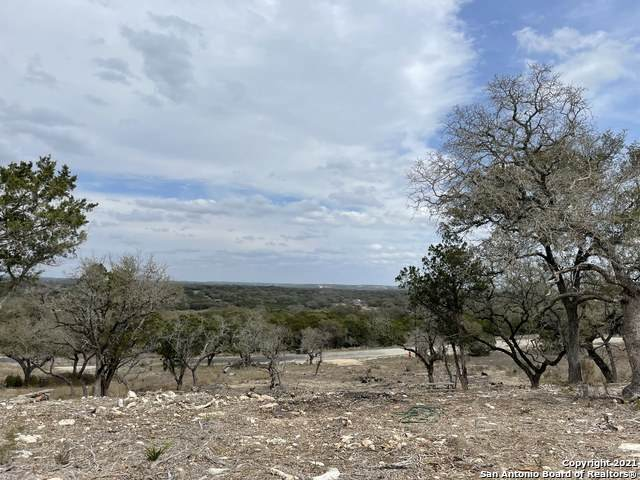 190 Restless Wind, Spring Branch, TX 78070 (MLS #1513469) :: Tom White Group