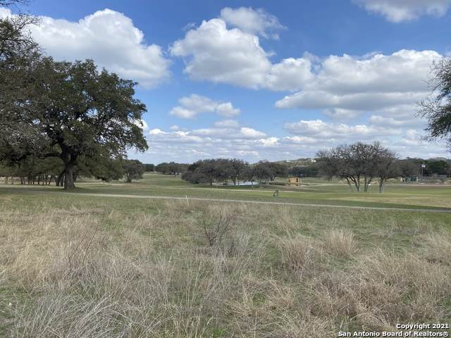 169 Gallagher Dr, Canyon Lake, TX 78133 (MLS #1513485) :: The Lugo Group