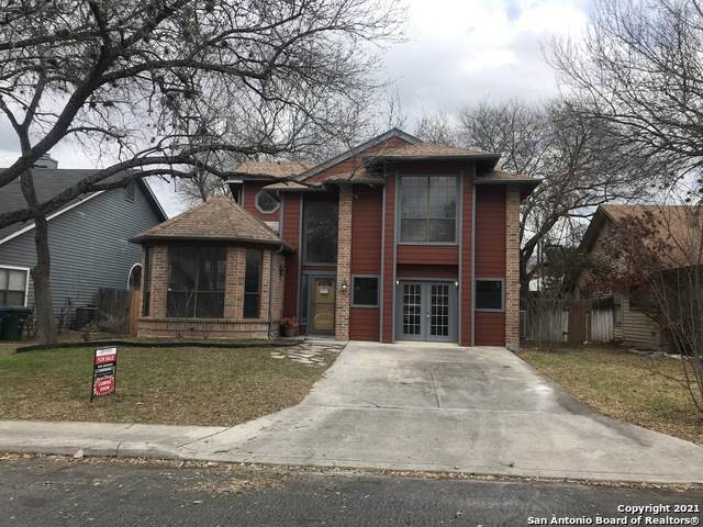 9947 Fall Harvest, San Antonio, TX 78254 (MLS #1513524) :: Vivid Realty