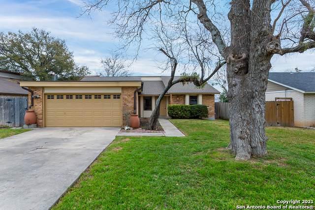 12234 Ecksminster St, San Antonio, TX 78216 (MLS #1513704) :: Beth Ann Falcon Real Estate