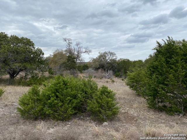 LOT 9 Rayner Ranch Blvd, Spring Branch, TX 78070 (MLS #1514061) :: Keller Williams Heritage