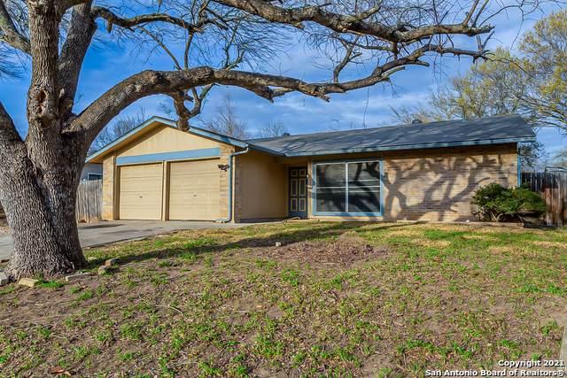 5127 Charolais Dr, San Antonio, TX 78247 (MLS #1514391) :: The Lopez Group