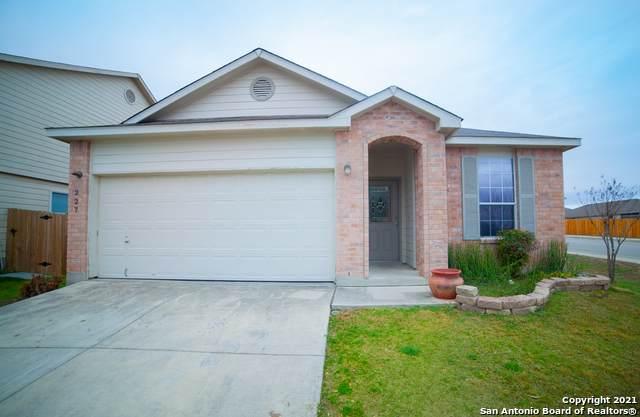 227 Fontana Albero, San Antonio, TX 78253 (MLS #1514673) :: The Lugo Group